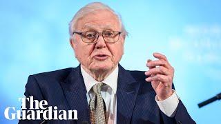 "David Attenborough warns Davos summit ""'the Garden of Eden is no more'"