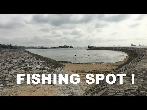 Fishing Spot SPOTTED @ Gardens by the Bay !