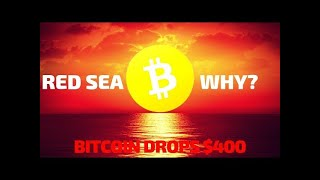 Why CryptoMarket Down 16B$ And Why Bitcoin Turn Down 400$ In A Single Day