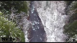 """the """"Real Proof - Drone Films Bigfoot"""" video"""