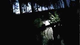 dark night in the forest - rychlebskie sciezki
