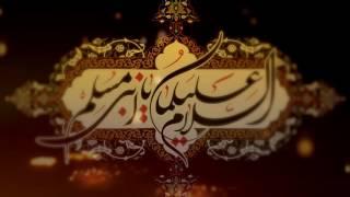 Muslim Kay Shahzaday | Mir Hasan Mir | New Noha 2016-17/1438 [HD]