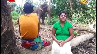 Jeevithaya Sirasa TV 29th May 2017