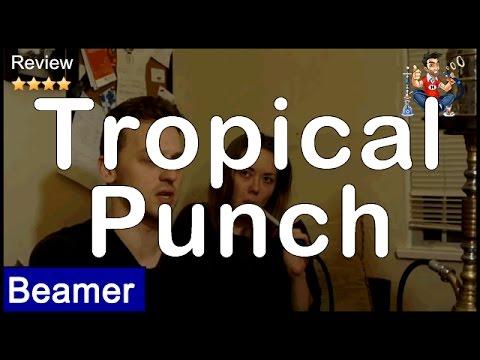 Xxx Mp4 Beamer Tropical Punch Herbal Hookah Molasses Review 3gp Sex