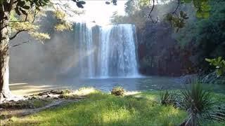 Beautiful Daydreaming RELAXING music ( piano, nature)