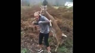 Horny Deer Tries to Mate with Teenage Girl - Fail of the Day | FailCenterTV