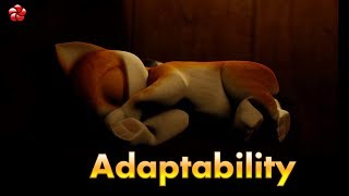 ADAPTABILITY ♥ New Kathu (Kathu3) story for children ★most popular malayalam cartoon video ★HD