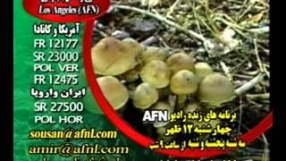 FARSI RADIO IRAN AFN MUSIC PERSIAN