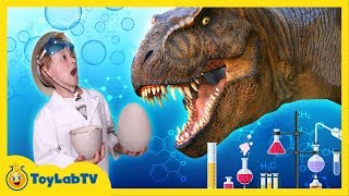 GIANT Life-Size Dinosaur Eggs Hatch in the Jurassic Park & T-Rex Escapes in Fun Kids Video w/ Toys