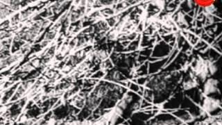 Kadina Rahasya 1969: Full Kannada Movie