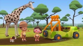 Cartoon   Rothschild's Giraffe   Learning For Kids   Leo The Wildlife Ranger #155