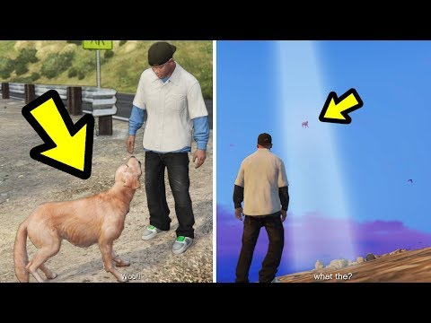 Xxx Mp4 GTA 5 If You Follow The Ghost Dog This Happens 3gp Sex