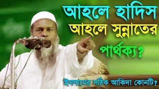 Mufti Mizanur Rahman Said bangla waz 2017 আহলে হাদিস নাকি আহলে সুন্নাত আকিদা বিস্বাস করবেন