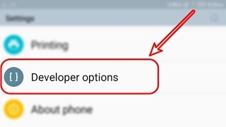 [HINDI] HOW TO ENABLE/DISABLE DEVELOPER OPTION