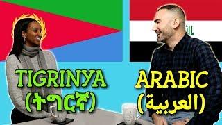 Similarities Between Tigrinya and Arabic