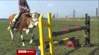 Alemã ensina vaca a saltar obstáculos (BBC BRASIL)