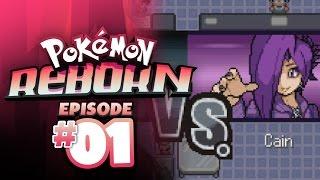 Pokemon Reborn Let