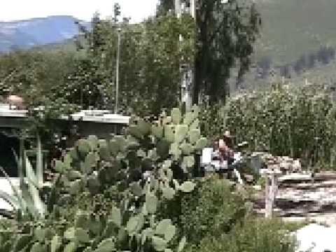 Documental de Mazahuas
