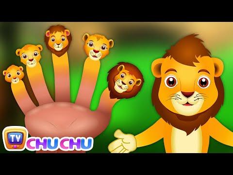 Finger Family Lion | ChuChu TV Animal Finger Family Songs & Nursery Rhymes For Children