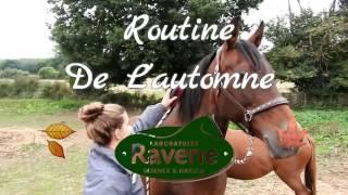 Routine de L'automne w/ Ravene