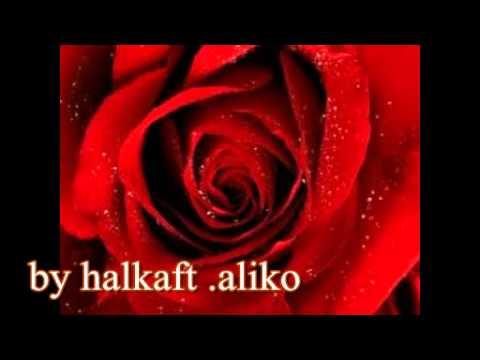 Xxx Mp4 Menekse Ile Halil Tutkun Turkish Music By Halkaft 2001 3gp Sex