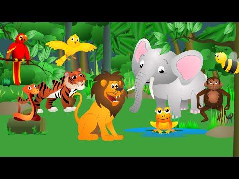 Wild animals скачать песню