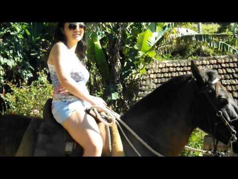 Cavalo que não anda kkkkk
