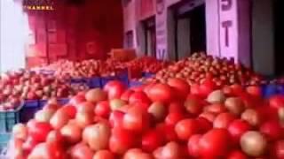 Hyderabadi funny news on tomato