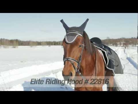 Xxx Mp4 Horze Elite Riding Hood 22816 3gp Sex