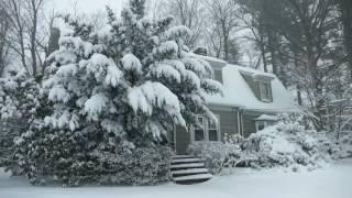 Winter Cabin in a Snowstorm | Falling Snow & Heavy Winds Blowing