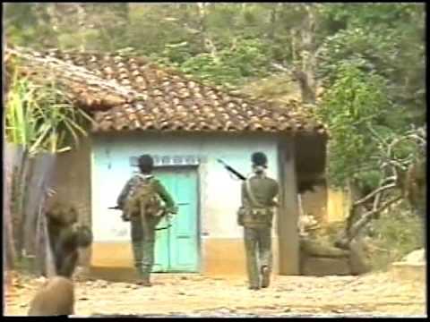 Video Soldados en Combate