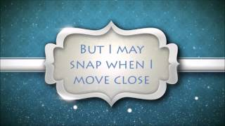 Sia - Elastic Heart Lyrics [HD]