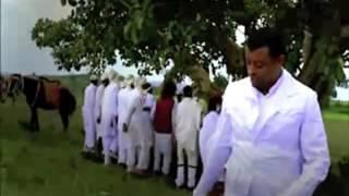 """New Oromo/Oromia Music """"Hinteenyuu"""" Taaddala Gammachuu"""