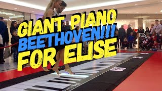 Beethoven Für Elise on GIANT PIANO