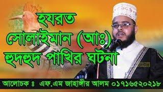 Bangla Waz Maulana FM Jahangir Alam হুদহুদ পাখীর ঘটনা