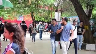 Bihari Babu || Amit Bhadana Latest Video || Elvish yadav || bihari