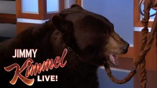 Wild Animals with Dave Salmoni and Rob Lowe