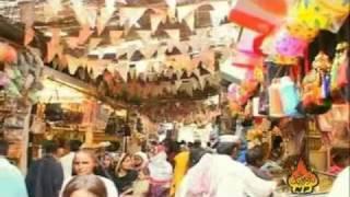 Qalandri Dhamaal - Sehwan Di Dharti