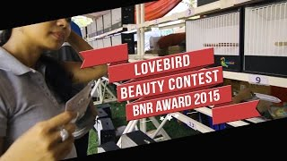 KONTES BURUNG : Lovebird Beauty Contest BnR Award 2015