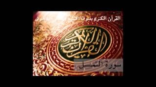 القرأن الكريم بصوت الشيخ مصطفى اللاهونى - سورة النمل