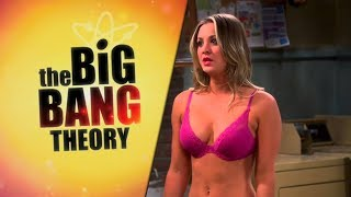 10 Things You Probably Didn't Know About The Big Bang Theory!