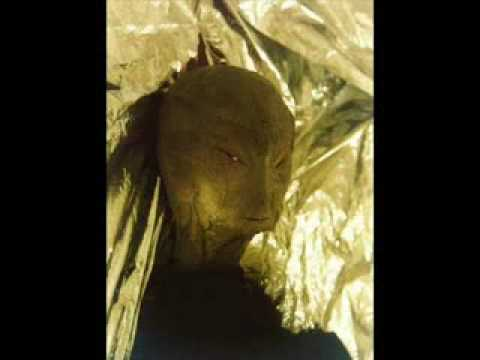 Satan s Seedline Pt2 Reptilians Half Human Animals Myth