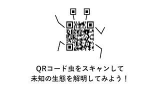 【テレビのノビシロ】QRコード虫(宮田陵平)