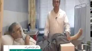Diabetes Treatment in Iran by Herbal Medicine and Vegetable