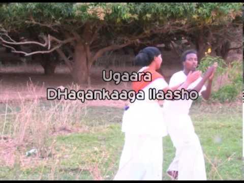 Dhaanto Afmadoobey Axmed Budul Iyo Kafeeya