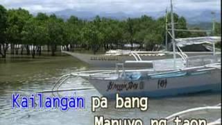 ROEL CORTEZ - DALAGANG  PROBINSIYANA - VIDEOKE PHILIPPINES LOVE  SONG