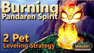 Burning Pandaren Spirit (Fire Spirit) 2 Pet Leveling Guide Warcraft Pet Battle