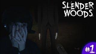 FAVIJ SPAVENTATO A MORTE!! - Slender Woods - Parte 1 [in Webcam]