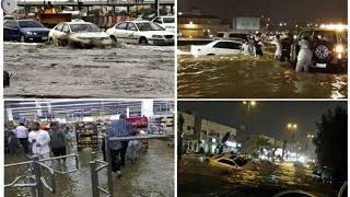 Chuva na Arábia Saudita arrastou até camelos