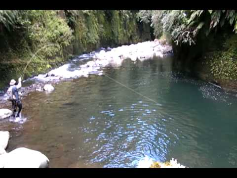Fly fishing in some of the best trout fishing water I have ever seen